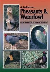 A Guide To Pheasants And Waterfowl image